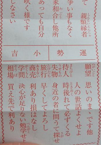 P1060003hatumode3.jpg